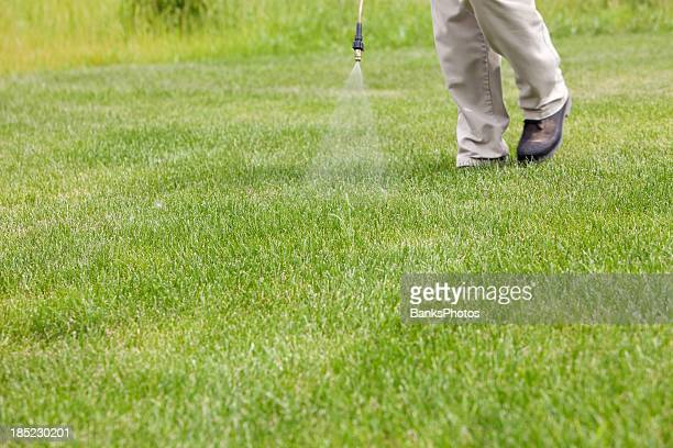 Lawn Care Worker Sprays Crabgrass