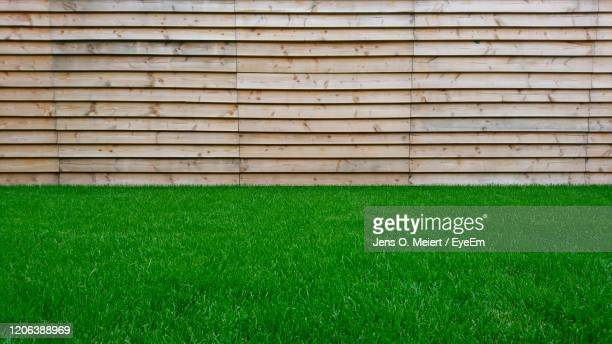 lawn in front of fence - gras stock pictures, royalty-free photos & images