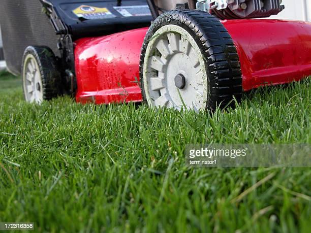 Lawn Machine on Green Grass