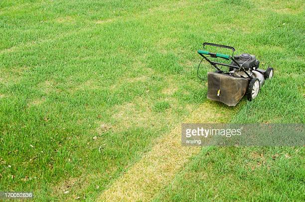 lawn mower and spring mowing - lawn mower stock pictures, royalty-free photos & images