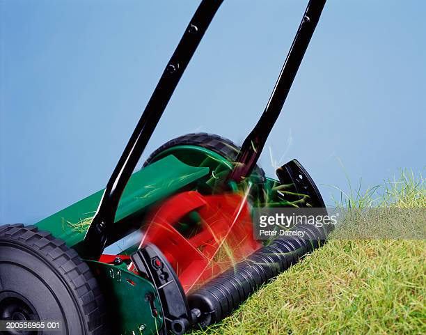 Lawn mower cutting grass, close-up (blurred motion)