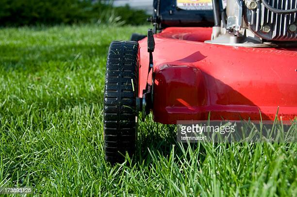 Lawn Mower from the Front
