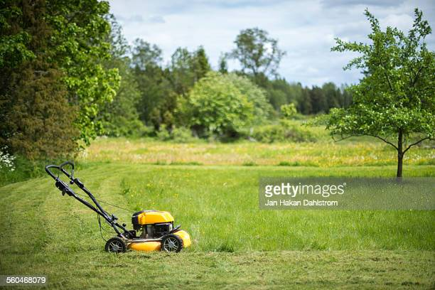 lawn mower in garden - lawn mower stock pictures, royalty-free photos & images