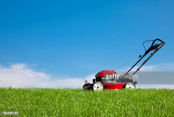 Tondeuse à gazon sur l'herbe