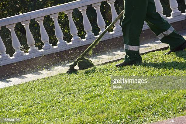 lawn mower - lutavia stock pictures, royalty-free photos & images