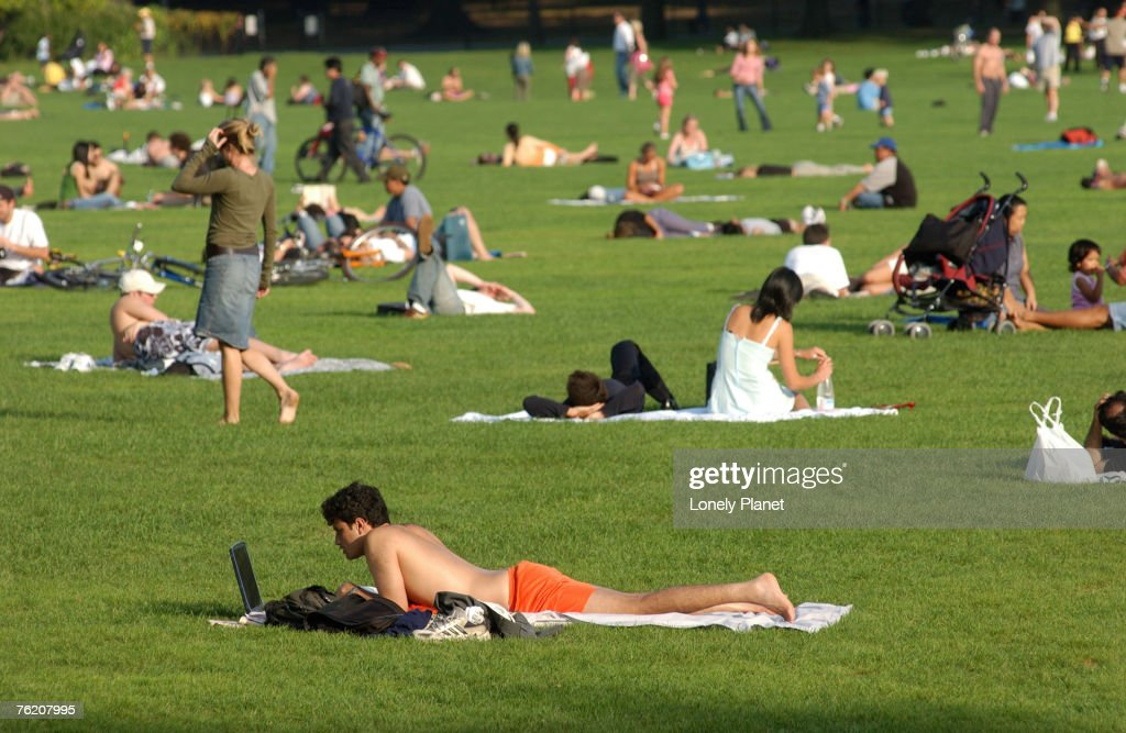Lawn scene, Central Park, New York City, New York, United States of America, North America : Stock Photo