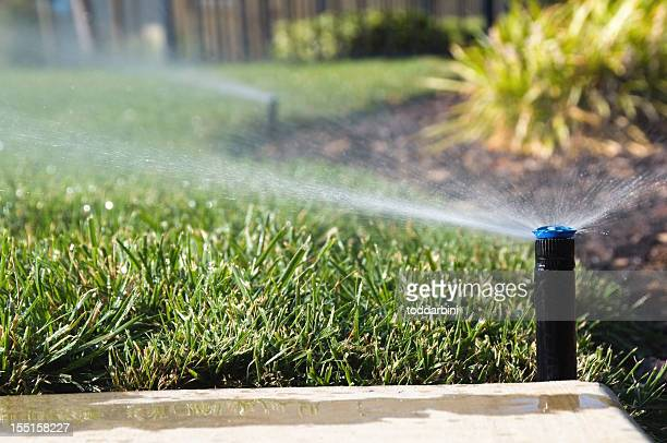 lawn sprinklers - sprinkler system stock pictures, royalty-free photos & images