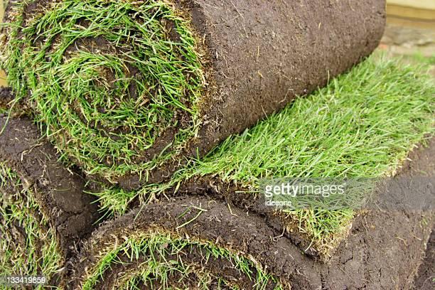 Rasen zum Mitnehmen