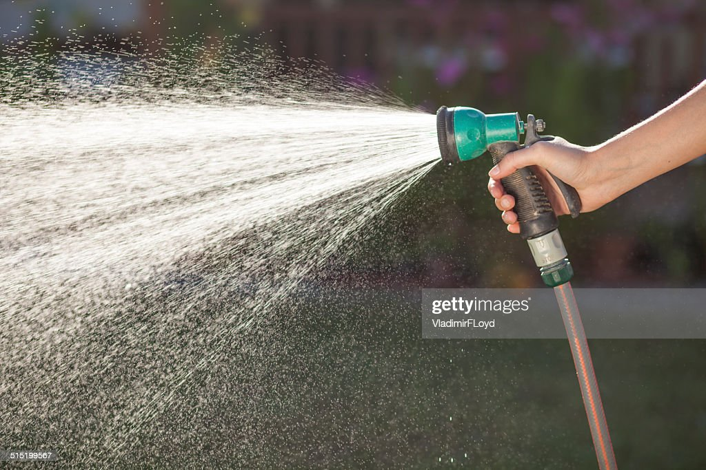 Lawn Watering : Stock Photo