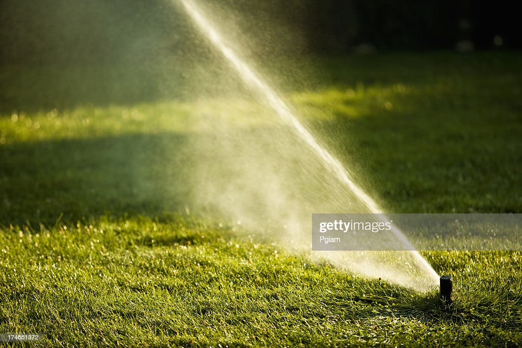 Lawn Watering Spray From The Garden Hose Stock Photo Getty