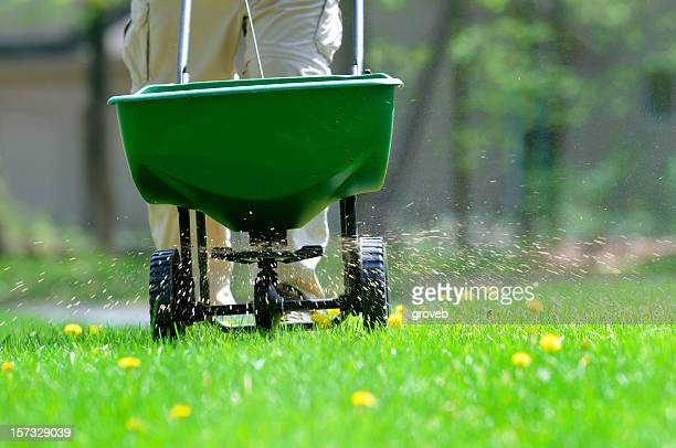 lawn weed and feed - lawn stock pictures, royalty-free photos & images
