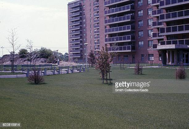 Lawn with trees outside a housing project in Bronx New York City New York 1968