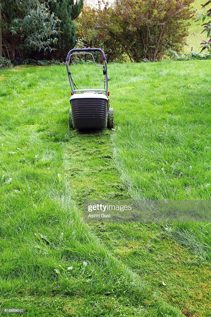 lawnmower on the meadow : Stock Photo