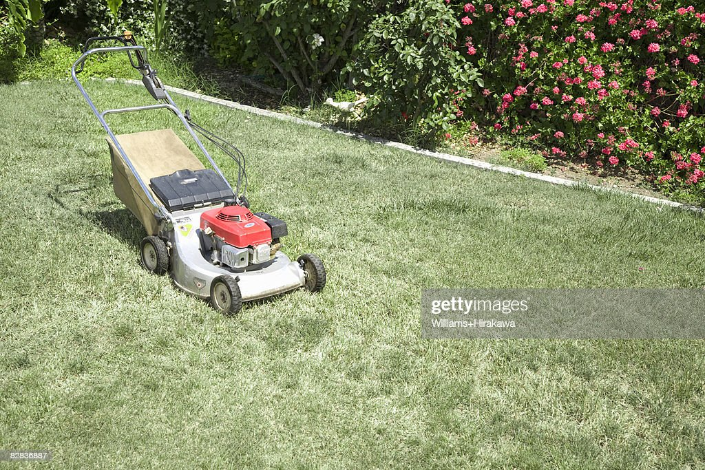 Lawnmower sitting on the lawn : Stock Photo
