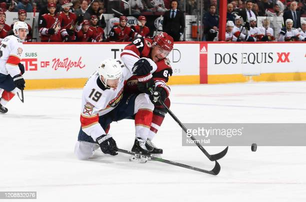 Lawson Crouse of the Arizona Coyotes battles for a loose puck with Mike Matheson of the Florida Panthers at Gila River Arena on February 25 2020 in...