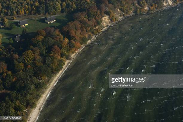 A layer of BlueGreen Algae in the core areas of the biosphere reserve South East Ruegen Island off the the coast of the Isle of VilmGermany 15...