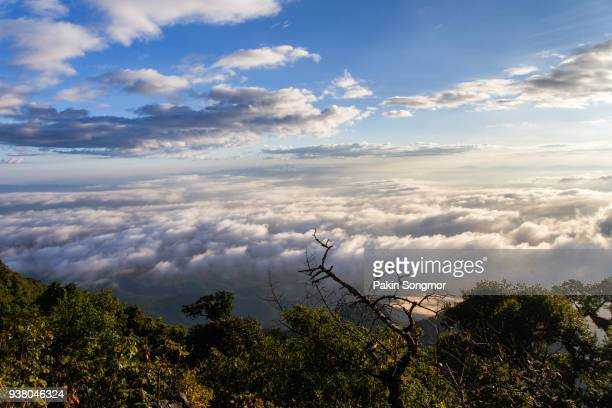 layer of mountains and mist at sunrise time, landscape at doi luang chiang dao, high mountain in chiang mai province, thailand - latin american civilizations stock photos and pictures