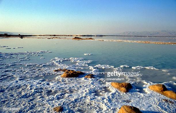 layer of salt on the dead sea in israel - dead sea stock pictures, royalty-free photos & images