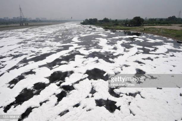 A layer of toxic foam floats on the surface of the Yamuna river at Kalindi Kunj on July 31 2020 in Noida India
