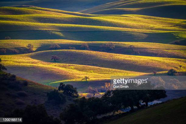 layered foothills, diablo mountain range - don smith stock pictures, royalty-free photos & images