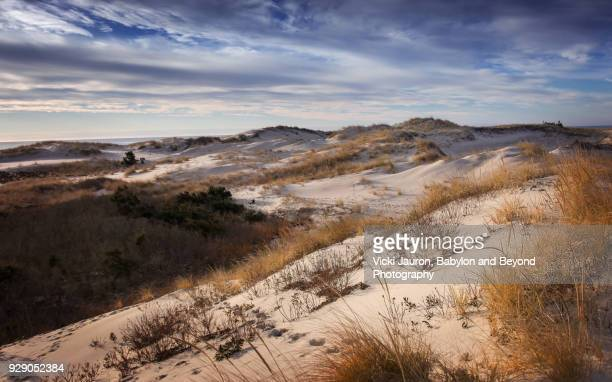 Layers of Sand Dunes Against Blue Sky at Robert Moses State Park