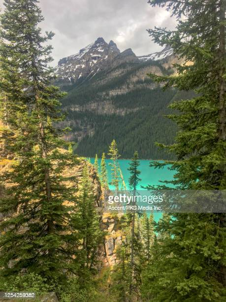 layers of trees, mountains and glacial lake with sunlight - 氷河湖 ストックフォトと画像