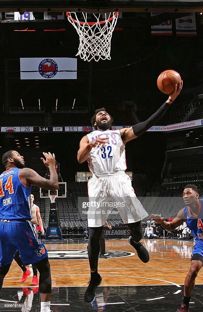 Westchester Knicks v Long Island Nets