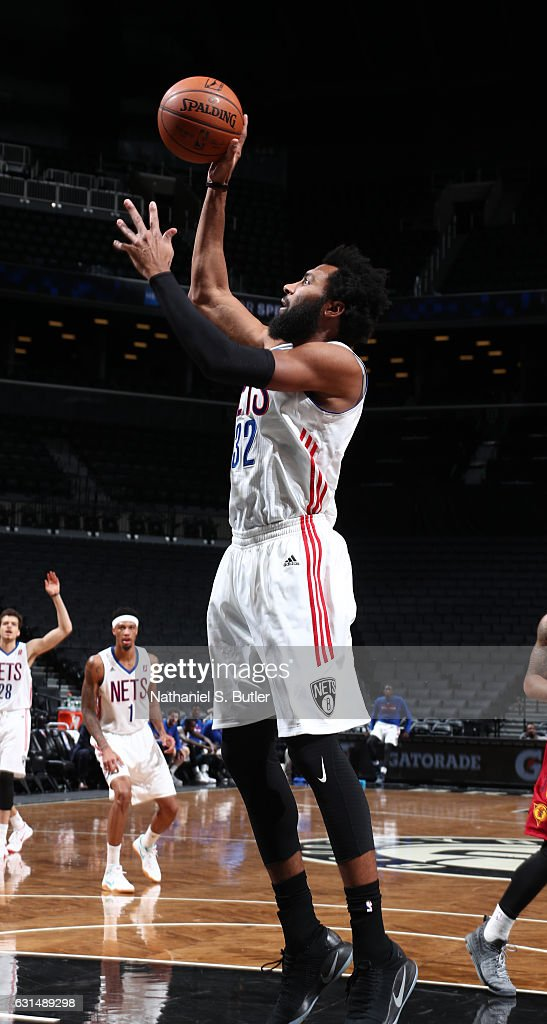 Fort Wayne Mad Ants v Long Island Nets