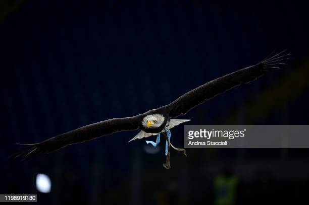 Lazio's mascot the eagle Olimpia flies over the pitch ahead of the Serie A football match between SS Lazio and Hellas Verona SS Lazio and Hellas...