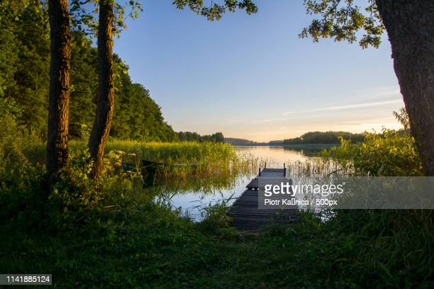 lazy afternoon at the lake - lazy poland stock photos and pictures