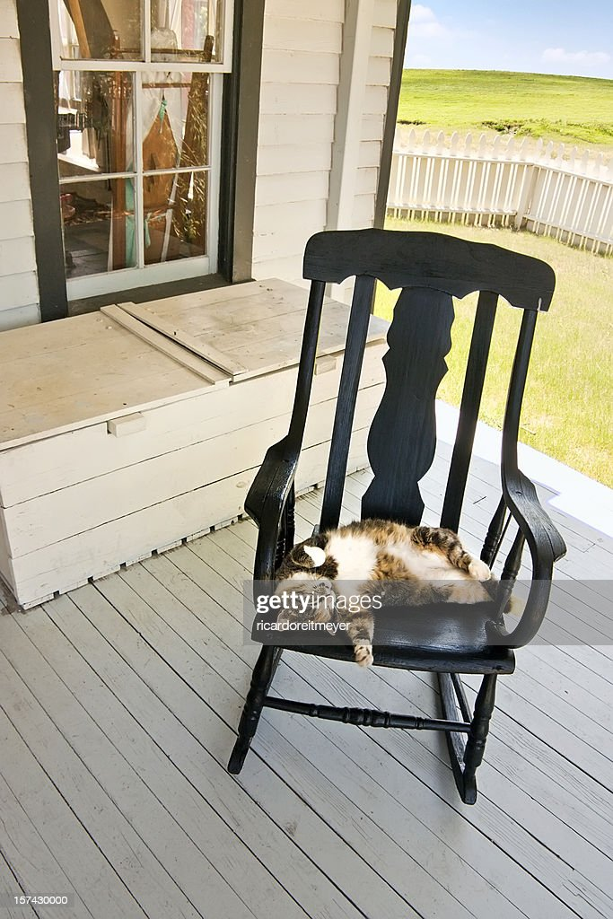 Lazy Summer Country Cat Sleeping on Back Porch Rocking Chair : Stock Photo