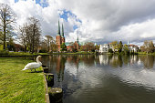 Lübeck cathedral with a swan, seen from the public park near the Mühlenteich (Schleswig-Holstein, Germany)