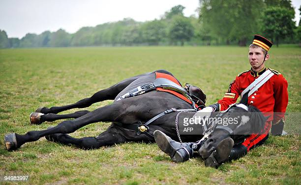 LCpl Healey sits with his liedown horse 'Yeoman' during a performance by The Queen's display horses for representatives of the Abu Dhabi government...