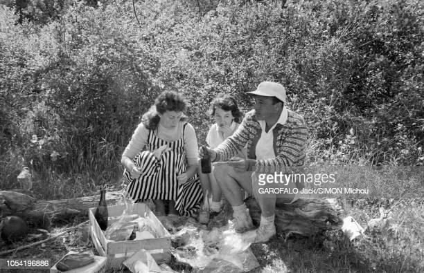 Le 8ème Festival de Cannes se déroule du 26 avril au 10 mai Gene KELLY en short casquette et Converse piqueniquant lors d'un piquenique dans un bois...
