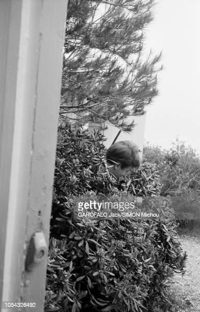 Le 9ème Festival de CANNES 1956 s'est déroulé du 23 avril au 10 mai plan de profil d'un photographe caché dans un buisson avec son appareil photo