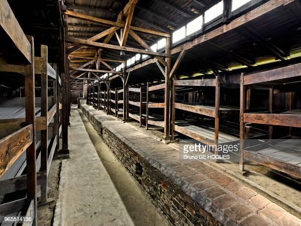 Le baraquement de quarantaine BIIa pour les hommes. Les lits de 3 couchettes sur 3 étages de 3 mètres de largeur pouvaient contenir de 9 à 12...