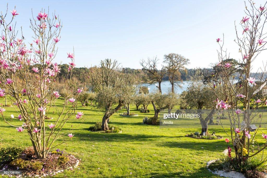 Les Jardins de Memoire' (The Memory Gardens). : News Photo