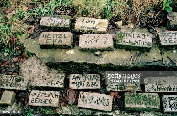 Le camp de concentration de BergenBelsen situé dans le nordouest de l'Allemagne et qui a été rasé par les Anglais après la libération Des briques...