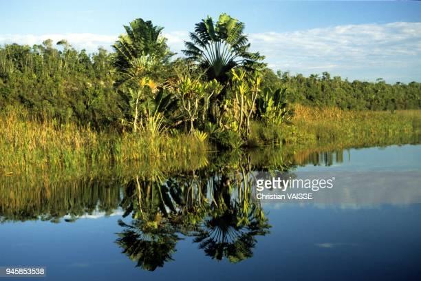 le canal des pangalanes est une voie d eau reliant depuis toamasina les villes de la cote est