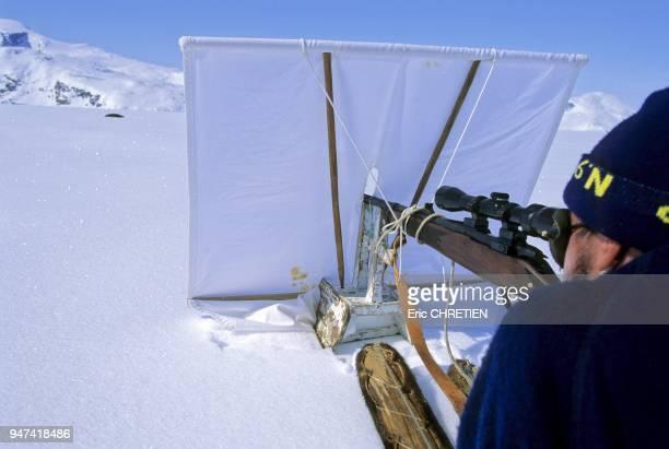Le chasseur tient dans son viseur un phoque annele Il progresse lentement en evitant de faire le moindre bruit tout en se cachant derriere un ecran...