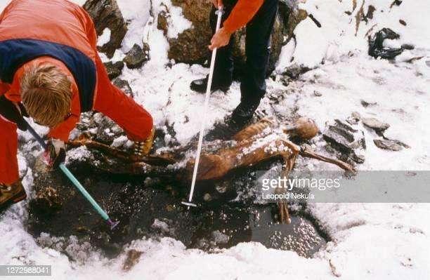 Le corps momifié a été trouvé par hasard par des randonneurs sur un glacier, le Similaun à 3200 mètres de hauteur, dans les Alpes de l'Otzal en...