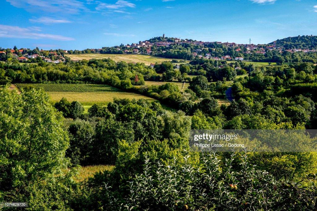 design de qualité f0a27 5df7f Le Crest Village Seen From La Roche Blanche Auvergne France ...