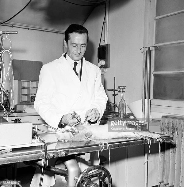 Le docteur Henri Laborit photographié dans son laboratoire de recherche à l'hôpital Boucicaut à Paris France le 22 janvier 1966