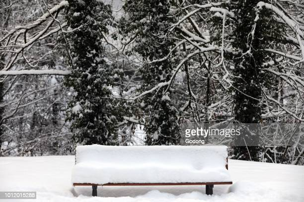 Decor Neige Stock Photos And Pictures Getty Images
