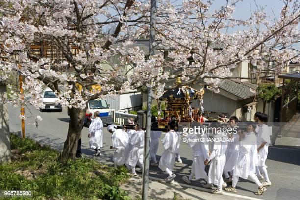 """Le festival annuel des """"onsen"""" en avril. Un Mikoshi est transporte. Ville de Beppu, 140.000 habitants celebre pour ses sources chaudes . La vapeur..."""