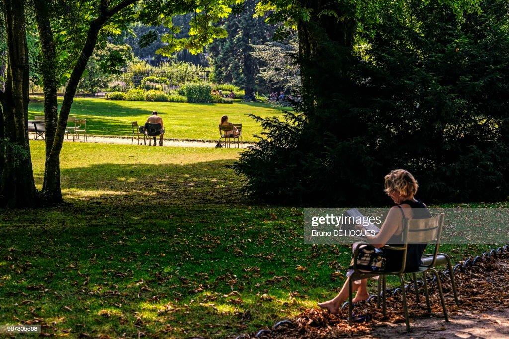 le jardin du luxembourg le 19 juillet 2013 paris france - Le Jardin Du Luxembourg