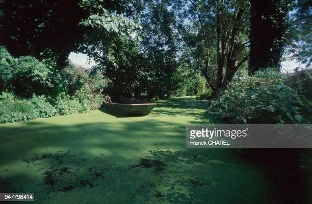 Le Marais poitevin dans les DeuxSèvres France