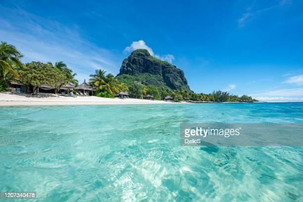 le morne beach luxury resort, mauricio. se siente como soñar. - islas mauricio fotografías e imágenes de stock