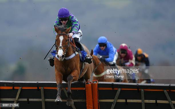 Le Musee ridden by Tom Cannon jump the last on their way to winning the Clarke WIllmott Taunton Maiden Hurdle Race at Taunton Racecourse on March 26...
