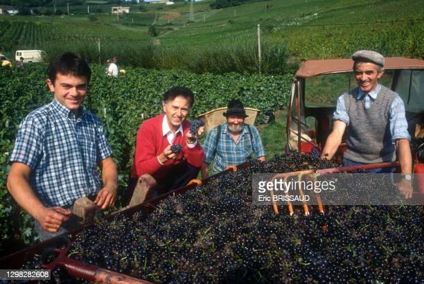 Le négociant en vin, vigneron et homme d'affaires Georges Duboeuf au moment des vendanges en 1996 à Romanèche-Thorins, France.